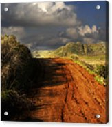Noble Road Acrylic Print