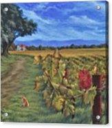 November Vineyard Acrylic Print