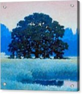 Oak Tree Acrylic Print