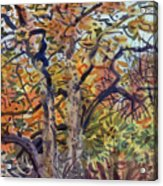 October Colors Acrylic Print