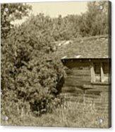 Old Abandoned Barn Falling To Ruin Acrylic Print
