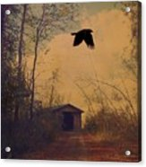 Lone Crow Flies Over The Old Country Road  Acrylic Print