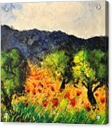 Olive Trees And Poppies  Acrylic Print