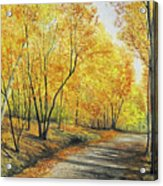 On Golden Road Acrylic Print