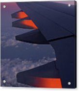 On The Wing 2 Acrylic Print