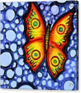 Orange Butterfly Acrylic Print by Brenda Higginson