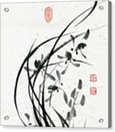 Orchid - 31 Acrylic Print