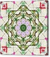 Orchids And Stone Wall Kaleidoscope 1764 Acrylic Print