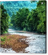 Osprey Over Elk River Acrylic Print
