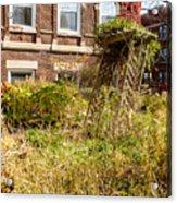 Overgrown Fall Garden Acrylic Print