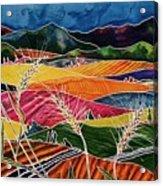 Palouse Fields Acrylic Print by Carolyn Doe