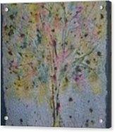 Paper Tree Acrylic Print