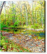 Pennsylvania Stream In Autumn, Digital Art Acrylic Print