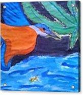 Philippine Kingfisher Painting Contest 1 Acrylic Print