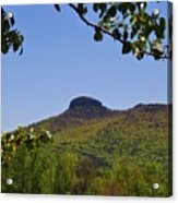 Pilot Mountain In Spring Green Acrylic Print