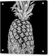 Pineapple Isolated On Black Acrylic Print