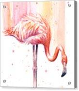 Pink Flamingo - Facing Right Acrylic Print