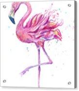 Pink Flamingo Watercolor Acrylic Print