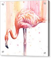 Pink Flamingo Watercolor Rain Acrylic Print