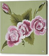 Pink Miniature Roses Acrylic Print