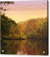 Placid Pond Acrylic Print