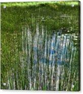 Pond Grasses Acrylic Print