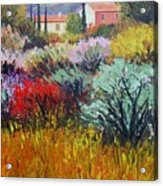 Provence In Bloom Acrylic Print