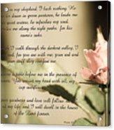 Psalm 23 Acrylic Print