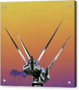 Psychedelic Metal Sculpture Of Two Swans Flying Acrylic Print