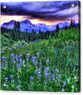 Purple Skies And Wildflowers Acrylic Print