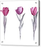 Purple Tulips Watercolor Painting Acrylic Print