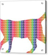 Rainbow Cat Acrylic Print