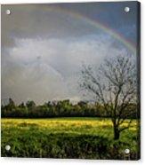 Rainbow Fields Acrylic Print