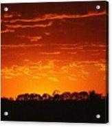 Red Arkansas Acrylic Print