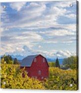 Red Barn And Mt Hood Acrylic Print