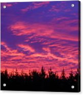 Red Clouds At Dawn Acrylic Print