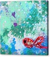 1 Red Fish Acrylic Print