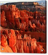Red Glow On Hoodoos Of Bryce Canyon Acrylic Print