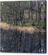 Reflections Acrylic Print