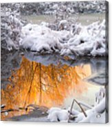 Reflections In Melting Snow Acrylic Print