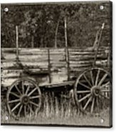 Relic of Days Gone By Acrylic Print
