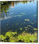 River Water Pollution Acrylic Print