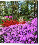 Road With Flowers Acrylic Print