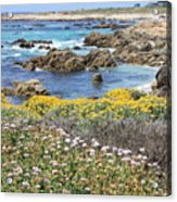 Rocky Surf With Wildflowers Acrylic Print