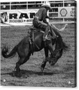 Rodeo Saddleback Riding 5 Acrylic Print