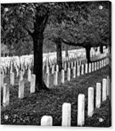 Rows Of Honor Acrylic Print