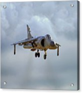 Royal Navy Sea Harrier. Acrylic Print