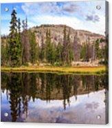 Ruth Lake Trail Acrylic Print