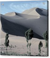 Sand Dunes In The Gobi Desert Acrylic Print