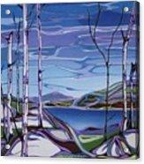 Sardi Lake Acrylic Print
